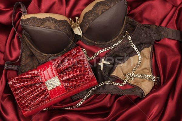 Stock photo: Sexy lingerie and red purse