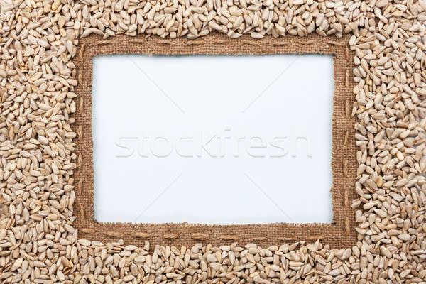 Quadro pano de saco linha girassol sementes mentiras Foto stock © alekleks