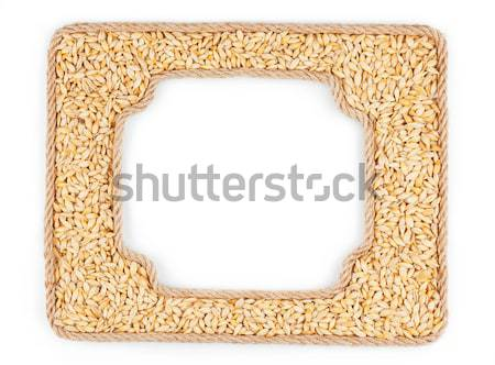 Two frames made of the rope with oats grain on a white backgroun Stock photo © alekleks