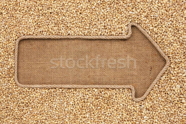 Pointer made from rope with grain pearl barley  lying on sackclo Stock photo © alekleks
