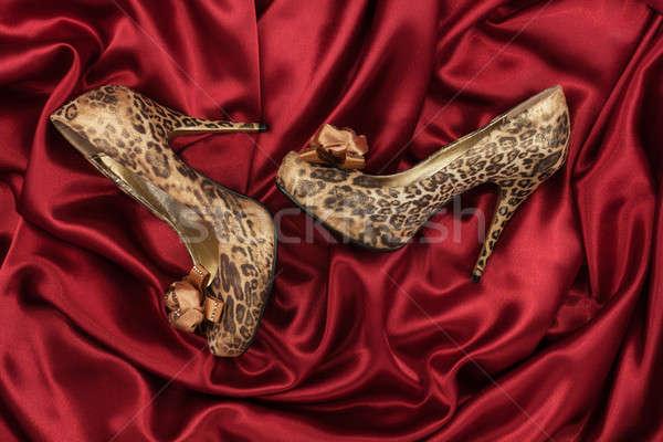 Cipők piros szövet konzerv nő nők Stock fotó © alekleks