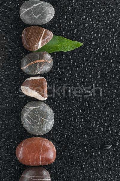 Gestreept stenen blad liggen nat zwarte Stockfoto © alekleks