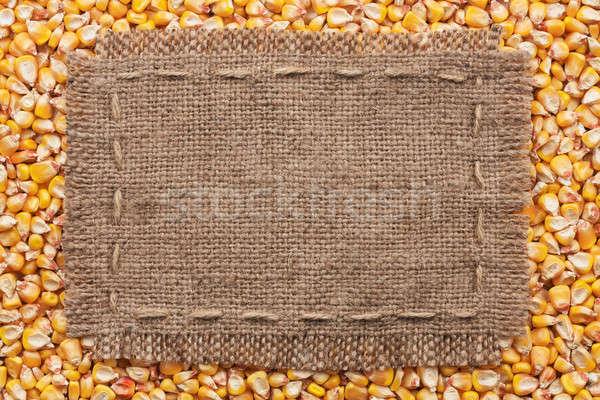 çerçeve çuval bezi mısır yer doku soyut Stok fotoğraf © alekleks