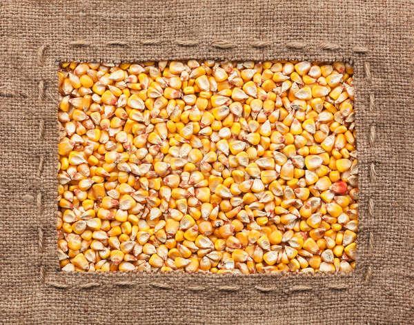 Frame made of burlap with corn Stock photo © alekleks