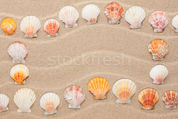 Frame made of seashell on a wavy sand Stock photo © alekleks