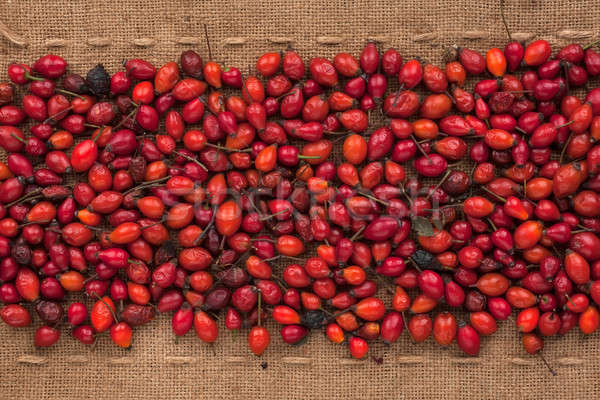 Rosehip lying on sackcloth between the lines Stock photo © alekleks