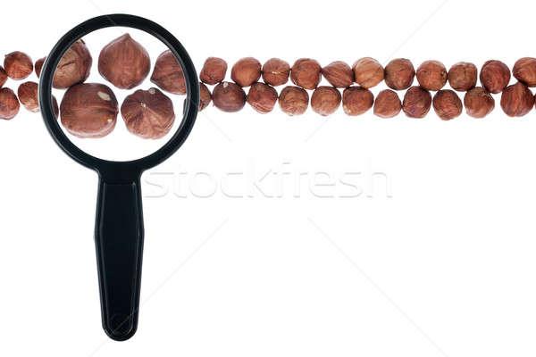 Peeled hazelnut with a magnifying glass Stock photo © alekleks