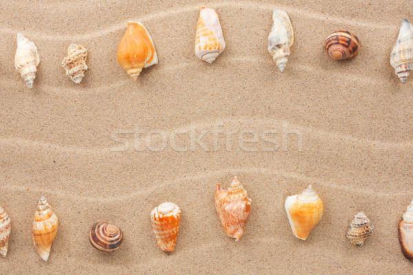 полоса морем снарядов песок пространстве текста Сток-фото © alekleks