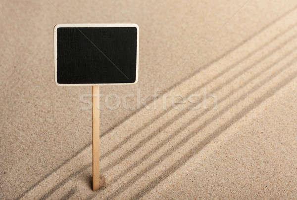 Pointer  standing in the sand Stock photo © alekleks