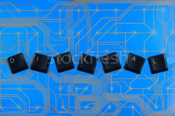 Billentyűzet kulcsok ki szó digitális kék Stock fotó © alekleks