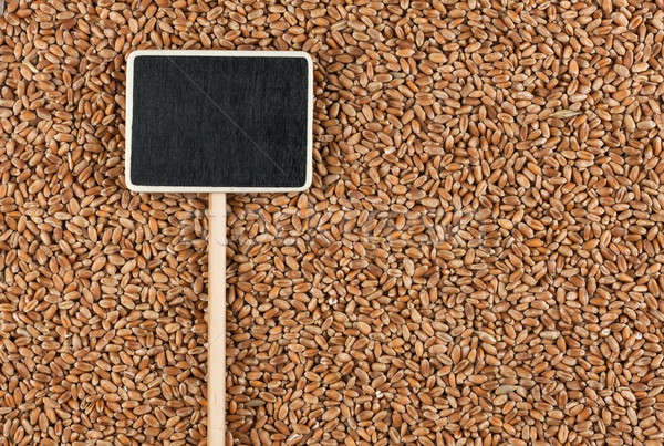 Pointer, the price tag lies on wheat Stock photo © alekleks