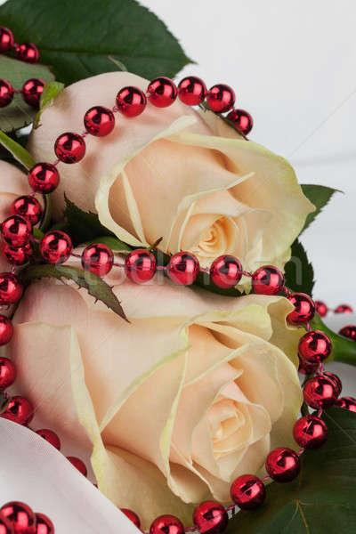 Dois rosas vermelho miçanga branco pano Foto stock © alekleks