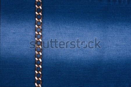 золото цепь джинсовой можете используемый дизайна Сток-фото © alekleks