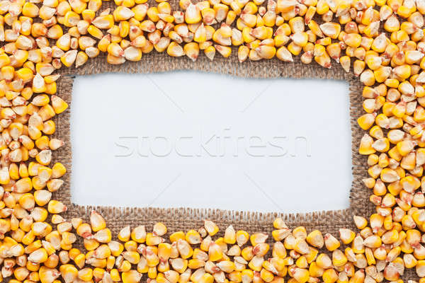 フレーム 黄麻布 トウモロコシ 白 食品 デザイン ストックフォト © alekleks