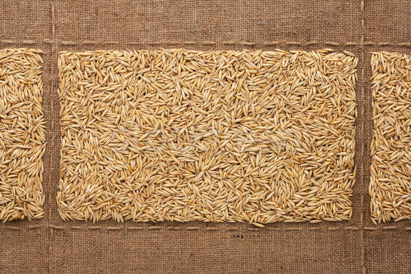 Oats grains on sackcloth, with place for your text Stock photo © alekleks