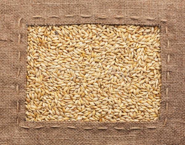 Quadro pano de saco cevada usado comida natureza Foto stock © alekleks