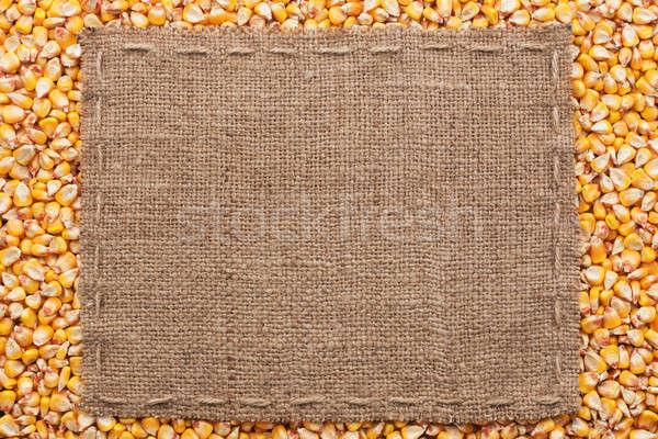 クラシカル フレーム トウモロコシ 穀物 スペース 背景 ストックフォト © alekleks