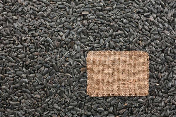 ストックフォト: タグ · 黄麻布 · 嘘 · 背景 · ヒマワリ · 種子
