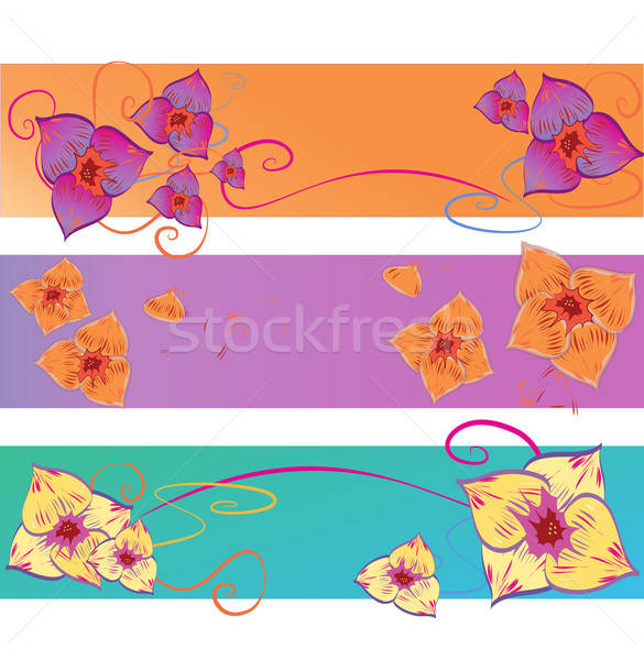 Set of Flower Vector Backgrounds. Abstract Floral Pattern  Stock photo © Aleksa_D