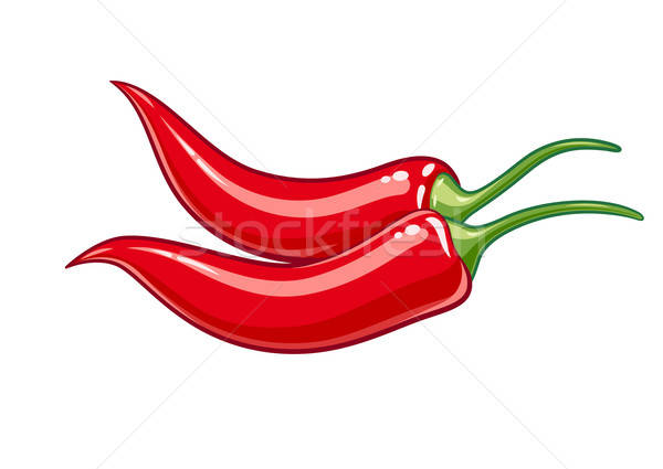 Pair red chile pepper vector illustration eps10 Stock photo © Aleksangel