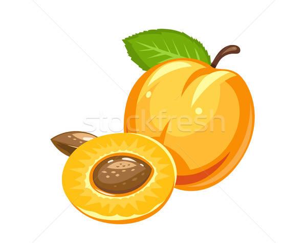Apricot. Ripe juicy fruit with nut and leaf Stock photo © Aleksangel