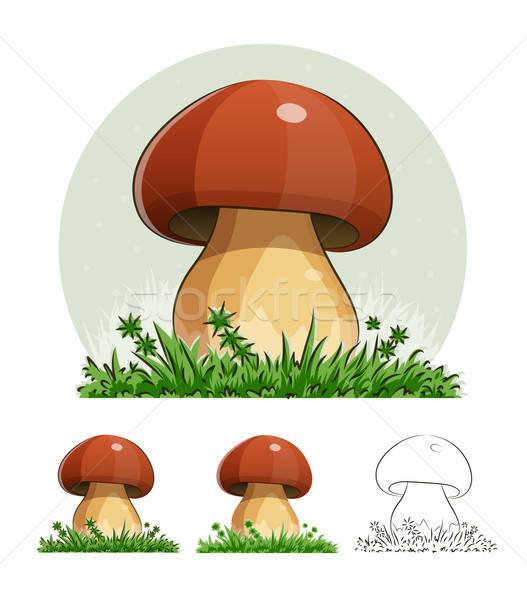 Funghi eps10 isolato bianco erba frutta Foto d'archivio © Aleksangel