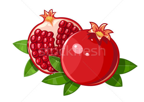 Couple juicy ripe pomegranate fruit stylized leaf Stock photo © Aleksangel