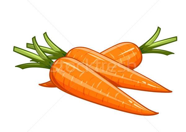 Carrot vector illustration eps10 isolated white background Stock photo © Aleksangel