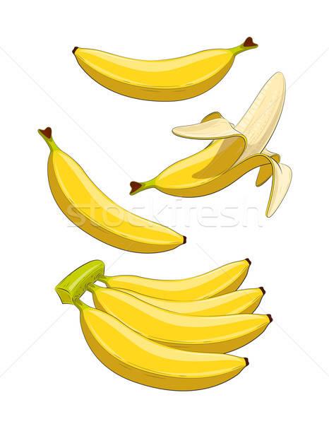 Banana fruta tropical conjunto eps10 vetor ilustrações Foto stock © Aleksangel