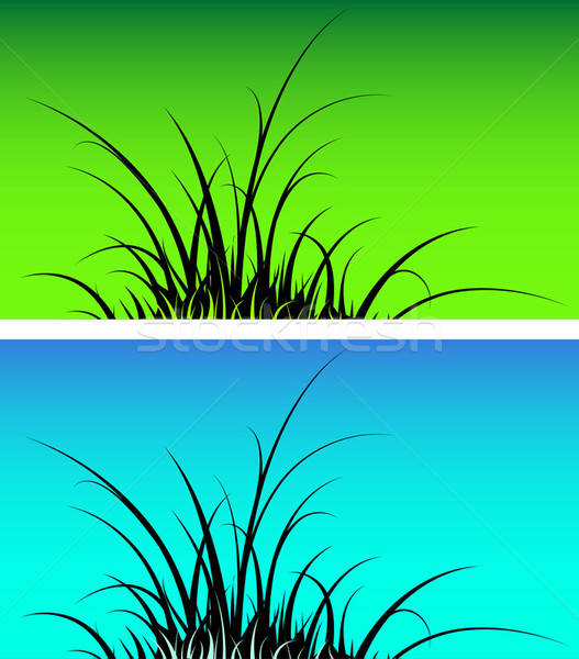 Gras silhouet textuur voorjaar natuur landschap Stockfoto © alekup