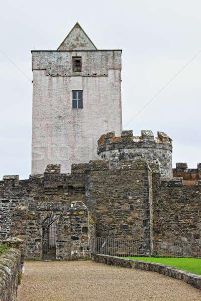Kale İrlanda su Bina seyahat mimari Stok fotoğraf © alessandro0770