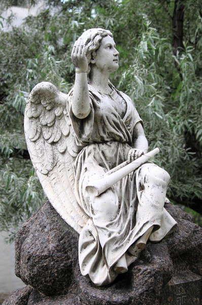 Cherub anioł trąbka drzew sztuki kościoła Zdjęcia stock © alessandro0770