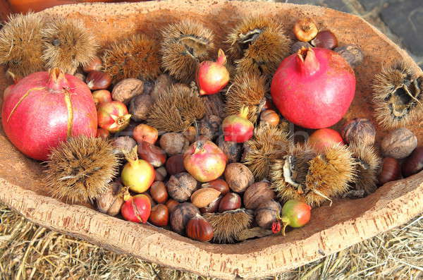 Agricultural products of autumn Stock photo © alessandro0770