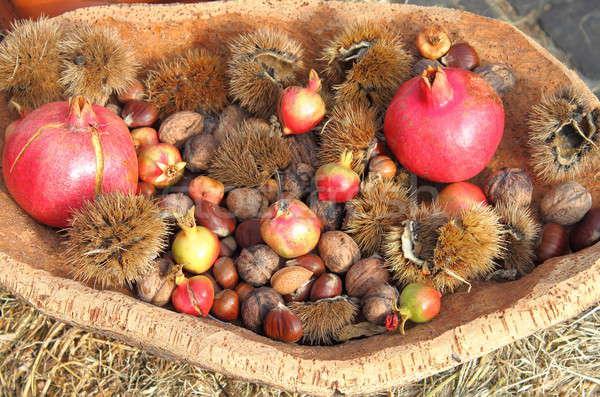 Rolniczy produktów jesienią taca typowy żywności Zdjęcia stock © alessandro0770