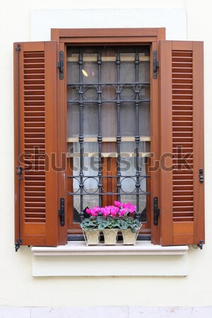 Stock photo: Romantic window