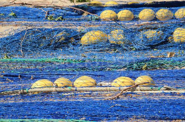 Balık tutma liman gıda balık deniz Stok fotoğraf © alessandro0770