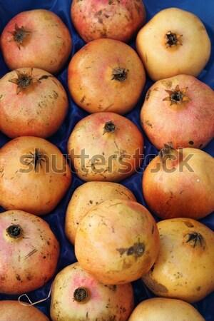 Pomegranates Stock photo © alessandro0770