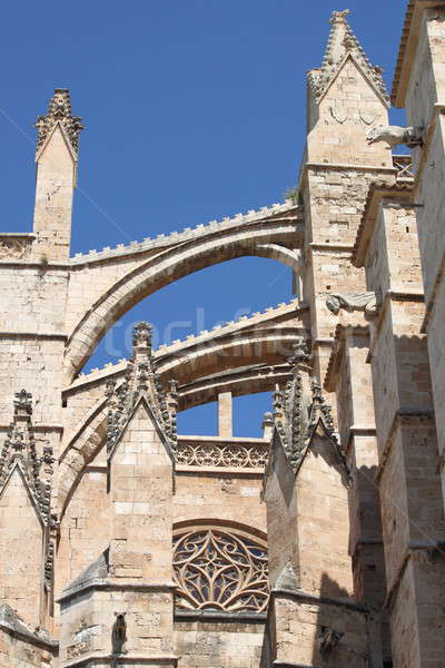 Palma de Mallorca cathedral Stock photo © alessandro0770
