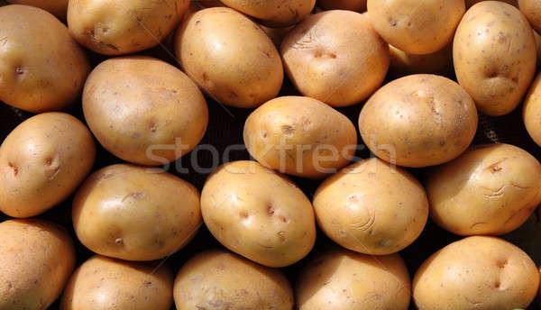 Potatoes Stock photo © alessandro0770