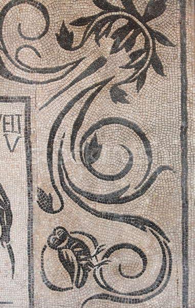 ősi római mozaik minta Róma Olaszország Stock fotó © alessandro0770