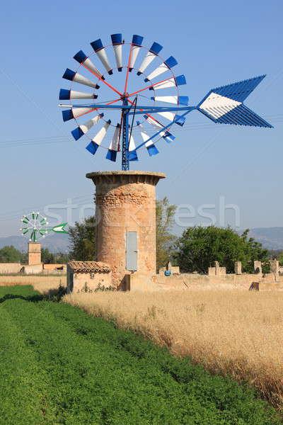 Majorca windmolen typisch eiland Spanje water Stockfoto © alessandro0770