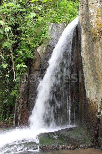 Little waterfall Stock photo © alessandro0770