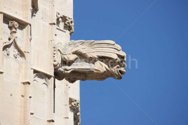 Gargoyle at La Lonja monument Stock photo © alessandro0770