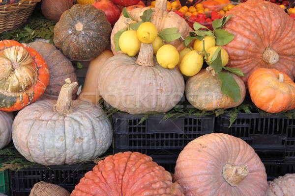 Pumpkins Stock photo © alessandro0770