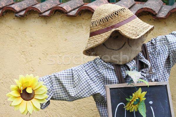 Scarecrow Stock photo © alessandro0770
