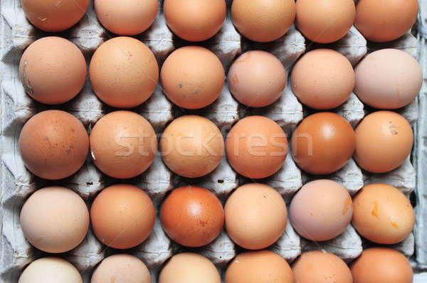 Bruin eieren veel karton dienblad Pasen Stockfoto © alessandro0770