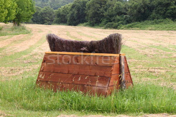 Equitation obstacle Stock photo © alessandro0770