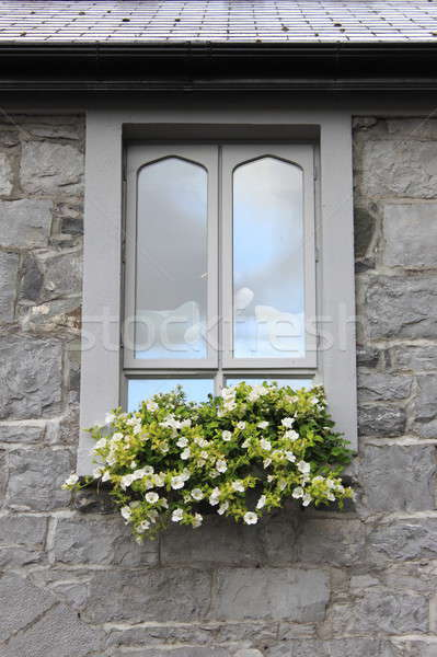 Modern pencere çiçekler renkli ev Bina Stok fotoğraf © alessandro0770