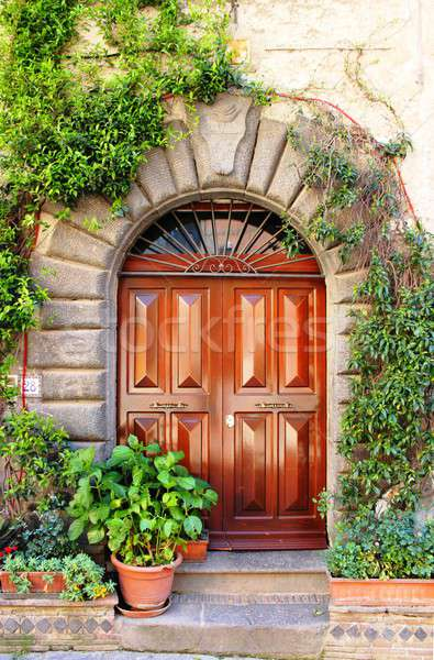 Renaissance front door Stock photo © alessandro0770