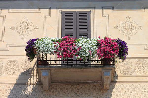 Erkély virág sok ház üveg kert Stock fotó © alessandro0770
